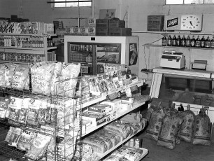 The Cornucopia Rt. 9 Upper Red Hook 1975 (2)
