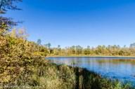 Lake Mary shoreline.