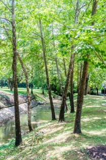 Mulberry Creek.