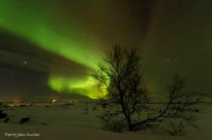 Aurore boréale, Myvatn, Islande