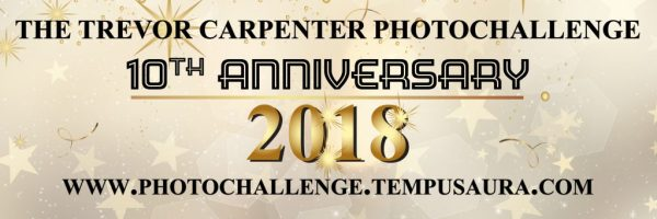 10th Anniversary Trevor Carpenter Photo Challenge