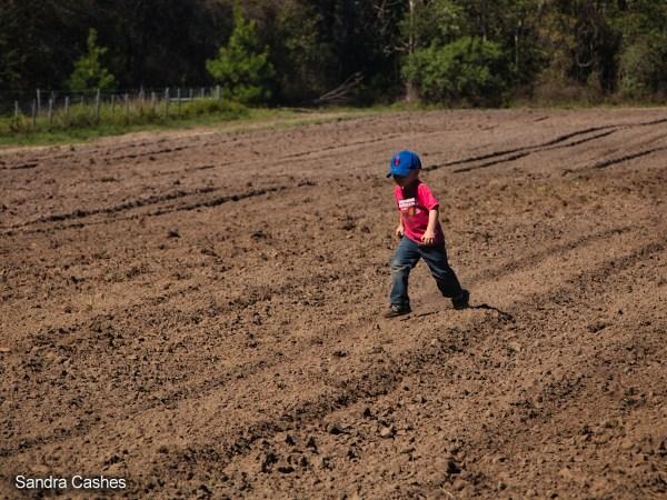 Boy Walking through a plowed field at the Dudley Farm
