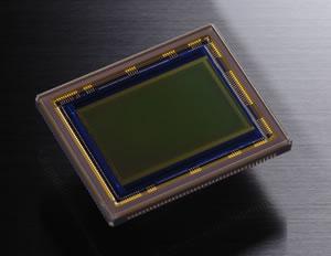 Nikon sensor D300
