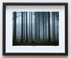 misty forest limited edition