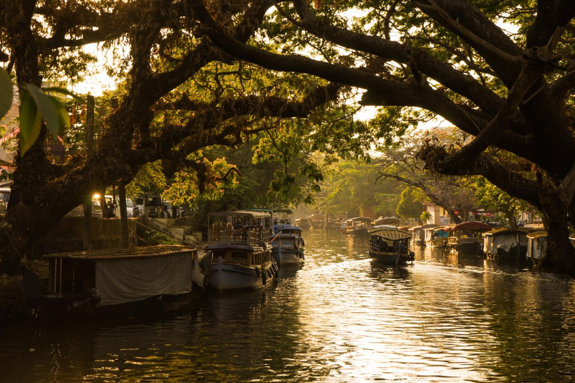 The famous Alleppey backwaters during the evening hours bathed in golden sunlight