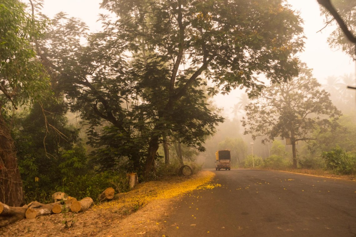 Tuk Tuk driving through the morning mists of a rural Indian jungle landscape