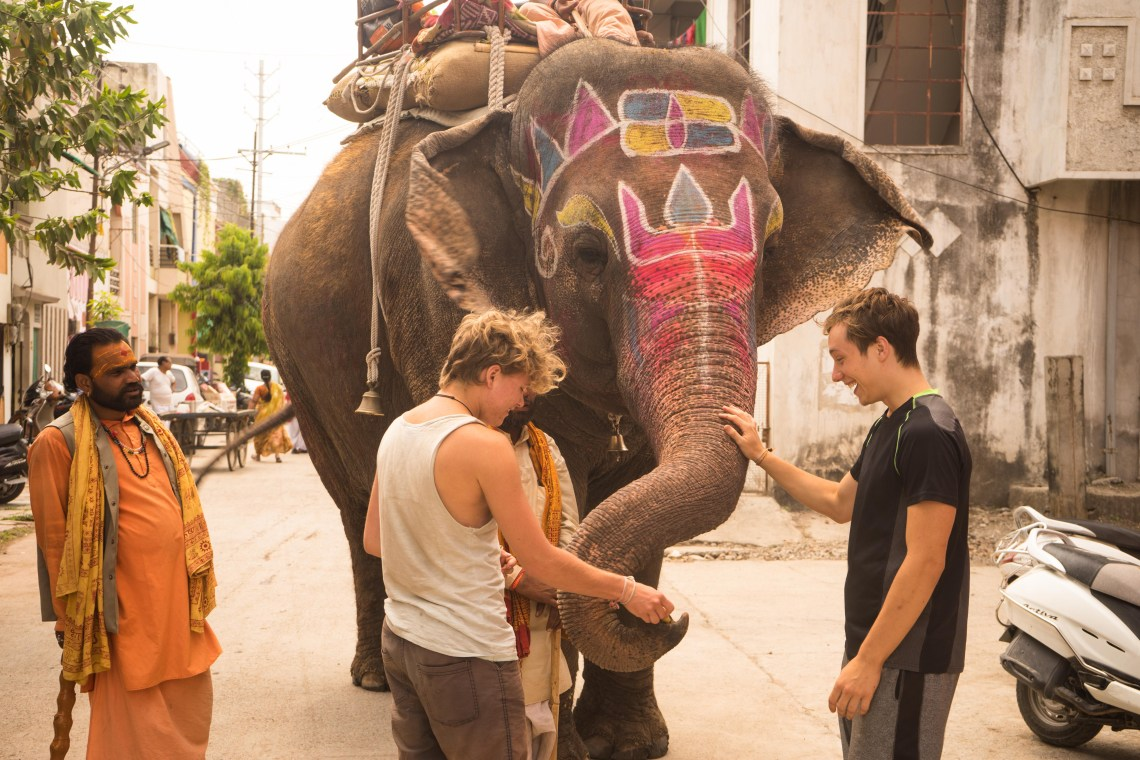 Photodyssee authors Rico and Flo enchanted by an elephant roaming the streets of Indore