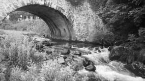 Monique - Le petit pont de pierre