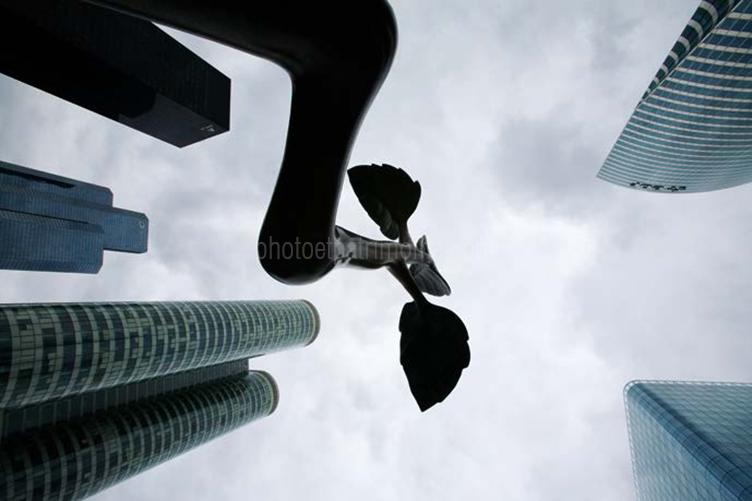 Point croissance - Lim Dong-Lak © Michel Bourguet