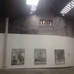 Rétrospective du prix Pictet : les arbres new-yorkais de Mitch Epstein