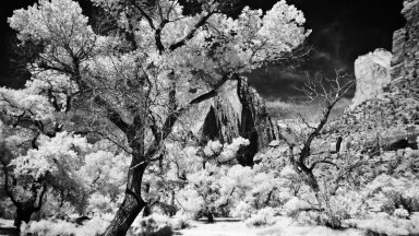 Digital IR Photography With Filters
