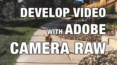 Developing Video Files with Adobe Camera Raw