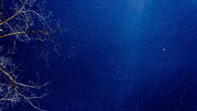 Making the Shot — A Starry Night (Stills & Motion)