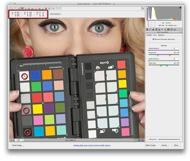 A RAW file open in Camera Raw 8.4 shows the color values for white, middle gray and black before it is white balanced.