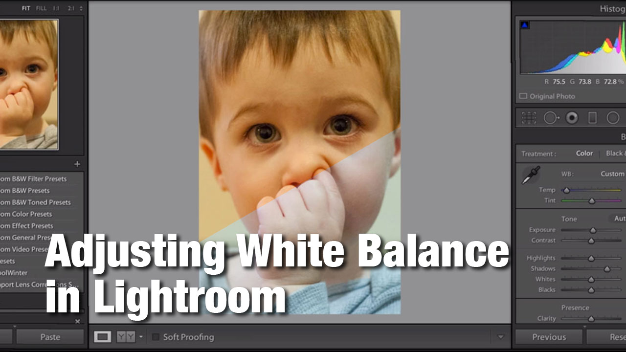 Adjusting White Balance in Lightroom