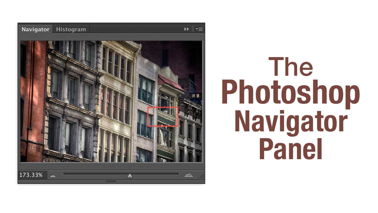See The Big Picture with Photoshop's Navigator Panel