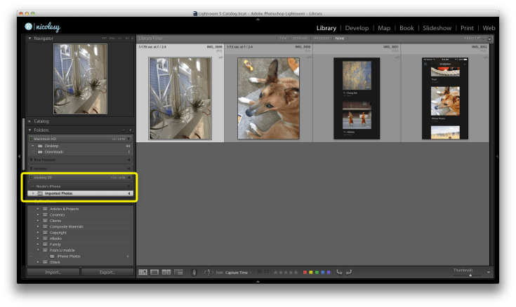 You can view your auto-import files from within Lightroom.