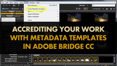 Accrediting Your Work with Metadata Templates in Adobe Bridge