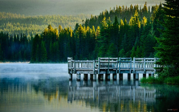 © Scott Jarvie - blog.jarviedigital.com/