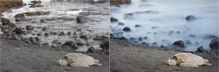(Left) 1/60 sec; (Right) 20 sec