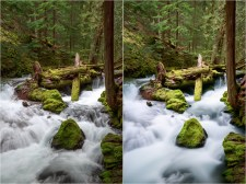 (Left) 1/8 sec; (Right) 40 sec
