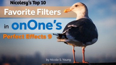 "My ""Top 10"" Favorite Filters in onOne's Perfect Effects 9"