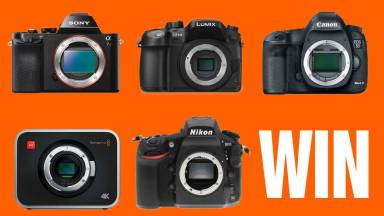 Your Last Chance to Enter Our Camera Contest — The Freedom to Choose