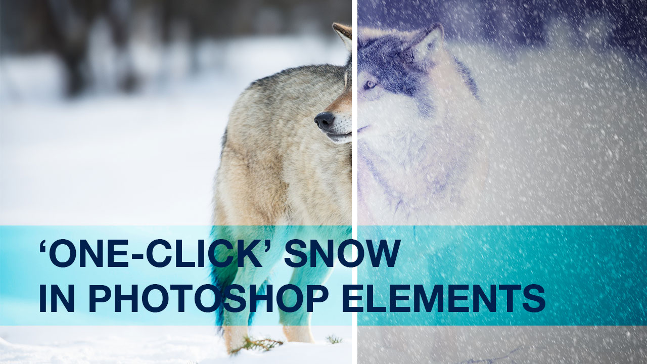 Creating One-Click Snow in Photoshop Elements | Photofocus