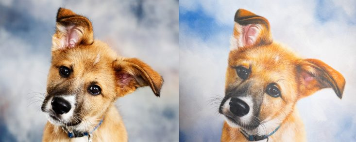 A side-by-side comparison of the original image (left) and the painting by Pixelist (right).