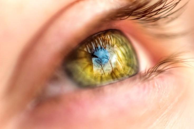 morrow-reverse-lens-macro-eye