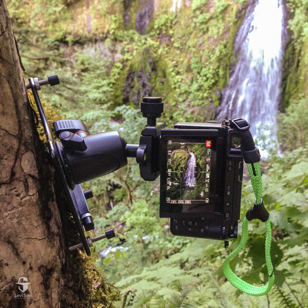 """Platypod Max's 1/4"""" 20 threaded legs fit perfectly in the termite holes in the tree at Upper McCord Creek Falls in the Columbia River Gorge."""
