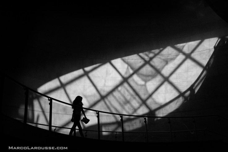 Become a better B&W photographer - and let your camera help
