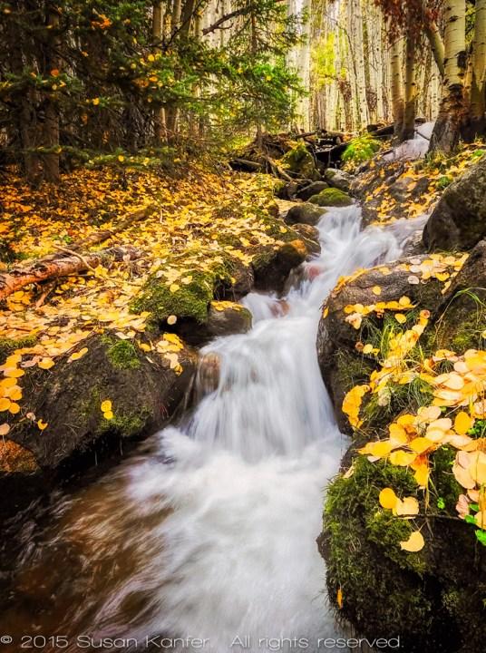 Boulder Brook, Rocky Mountain National Park