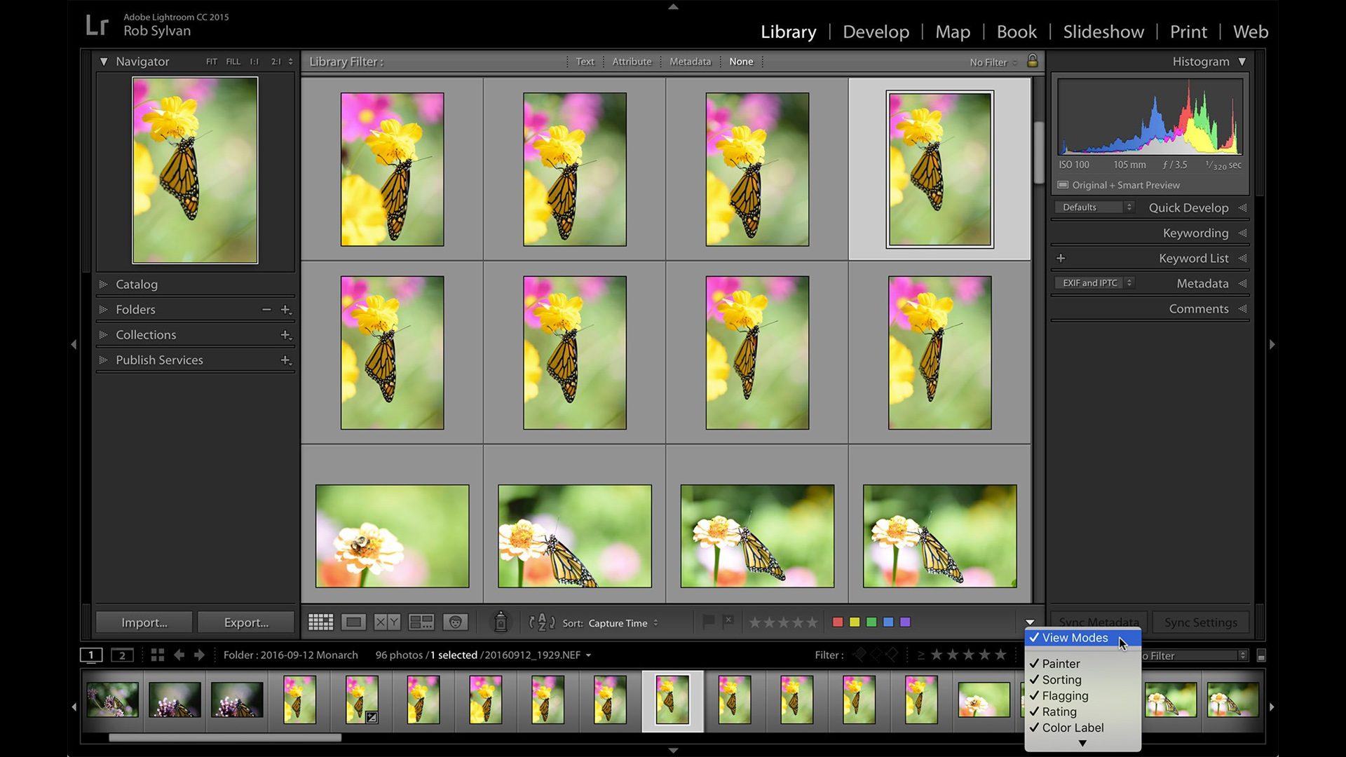 Lightroom's Grid and Loupe View Modes