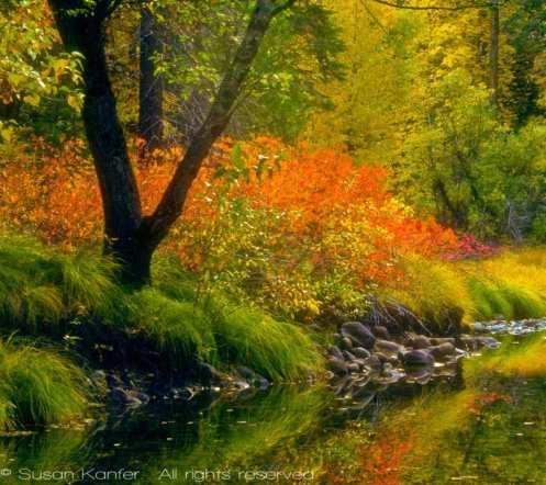 yosemite-fall-colors-1