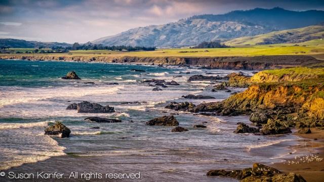 The Central Coast of California:  A Winter Wildlife Destination