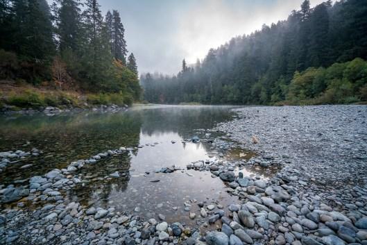 2016-09-16_NorthernCalifornia_Redwoods_0228