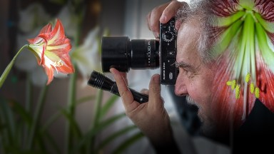 How to Light Close-up Flower Photos with a Flashlight