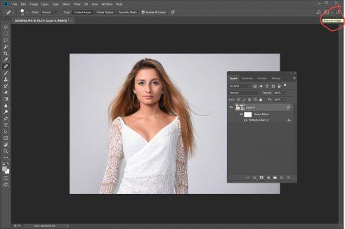 Adobe Send