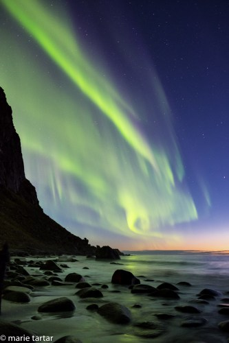 Lofoten Norway is a beautiful place pffering the possibility of seeing the Northern Lights