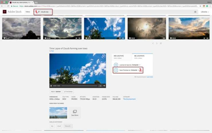 Adobe Stock page with video preview, licensing options and preview download buttons.