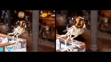 Quick Tip: Get Close to Achieve a Shallow Depth of Field