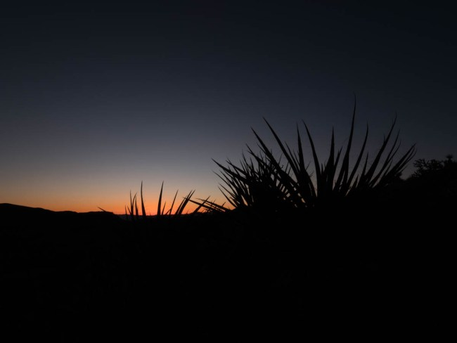 Middle Bracketed Image for Silhouette