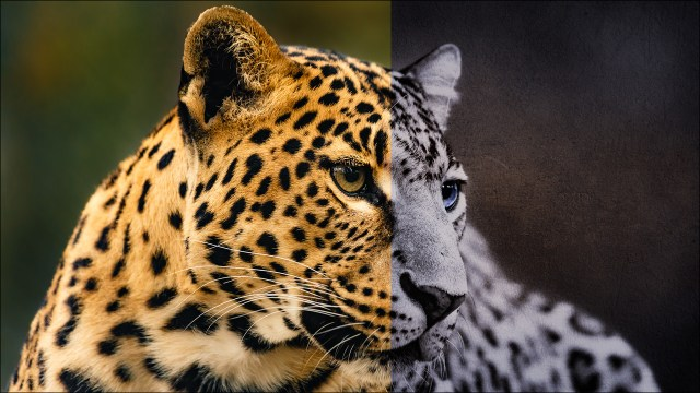 How to Enhance Your Photos With Textures - Part 1: Adding Textures