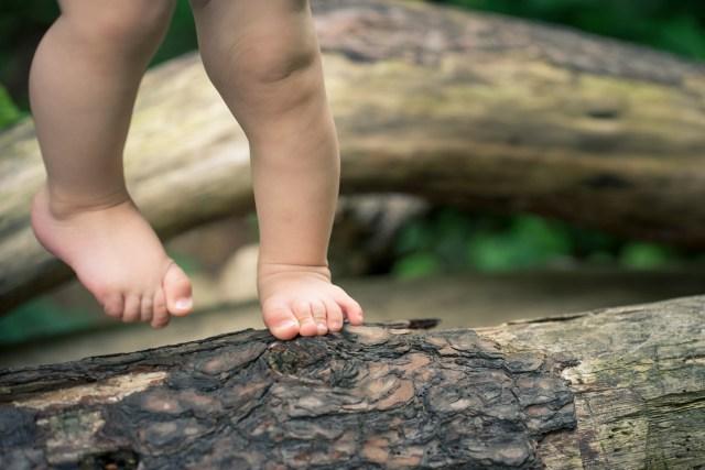 baby feet, bark, toes