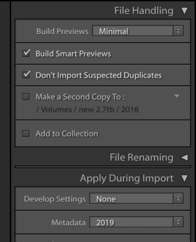 lightroom, import window, smart previews, previews,
