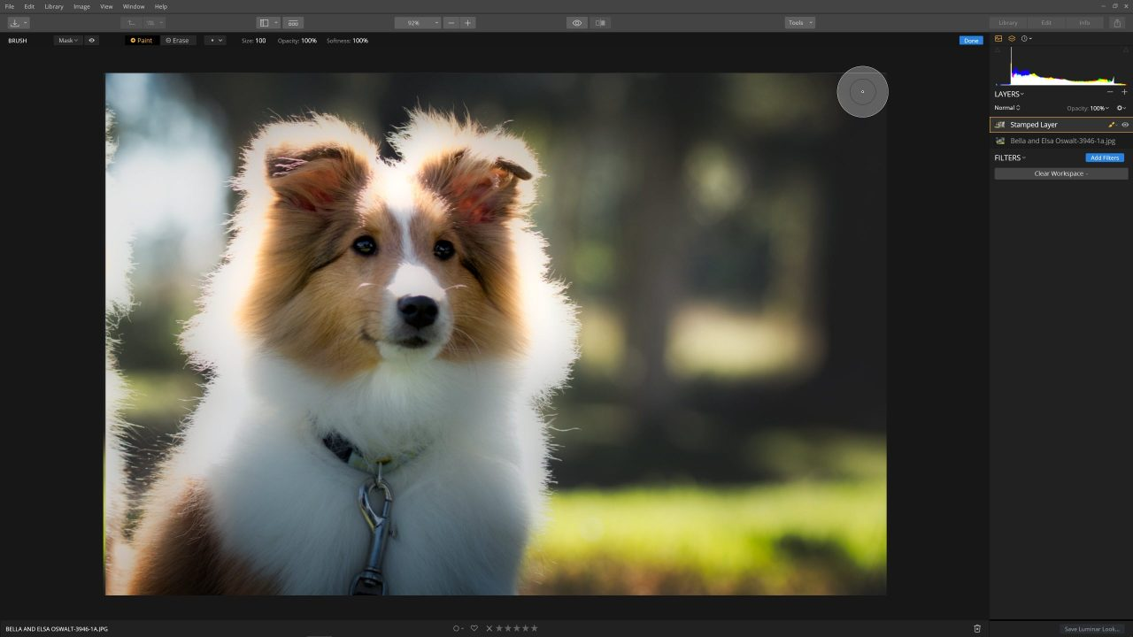 Remove distractions from background -Masking