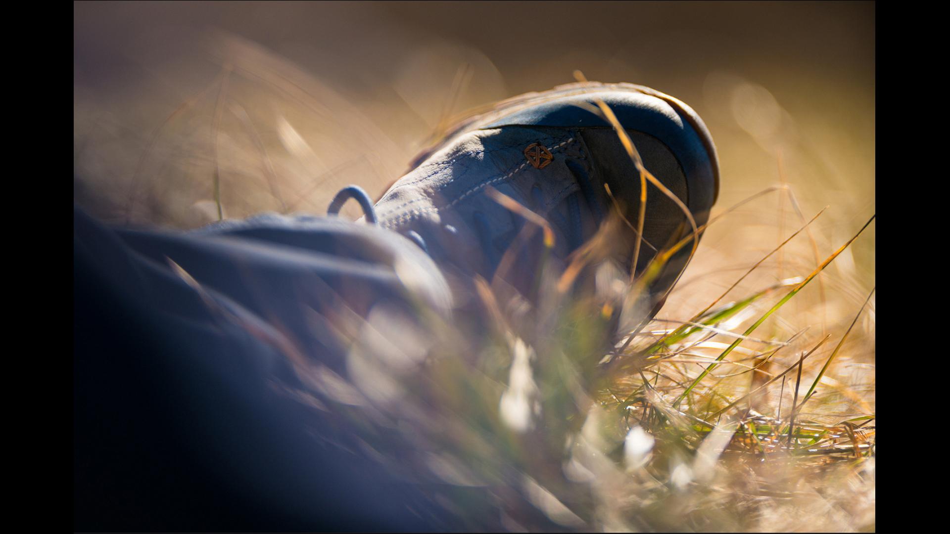 Davide Gabino photographer of the day