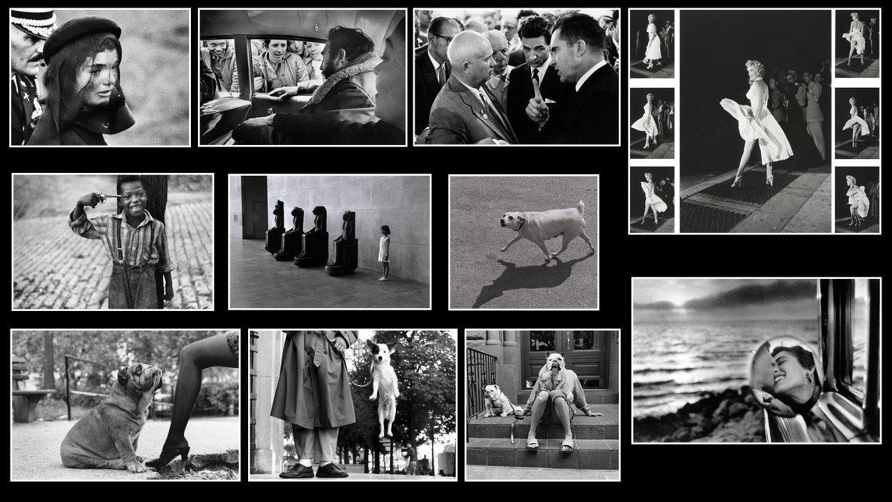 On Photography: The photography of Elliott Erwitt.