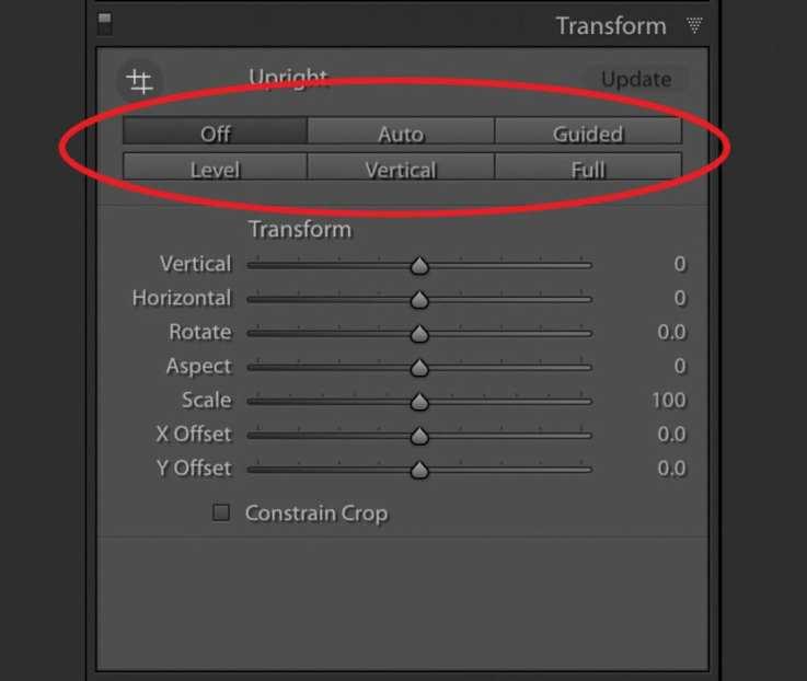 Transform Tool - Default Options